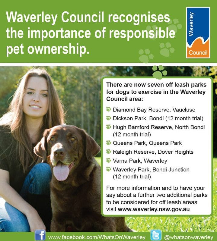 Waverley Council Recognises The Importance Of Reponsible Pet Ownership