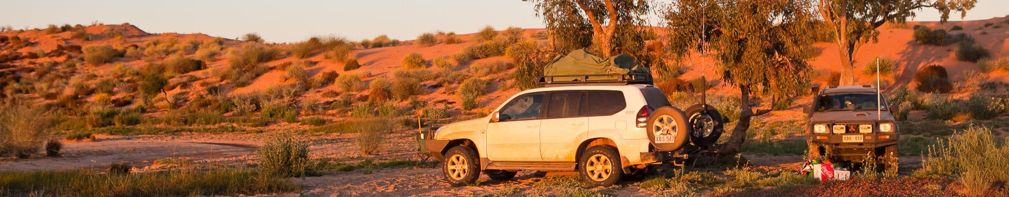 White 4Wheel drive car on dirt road, driving through red desert with green vegetation, yellow flowers on bush in foreground,
