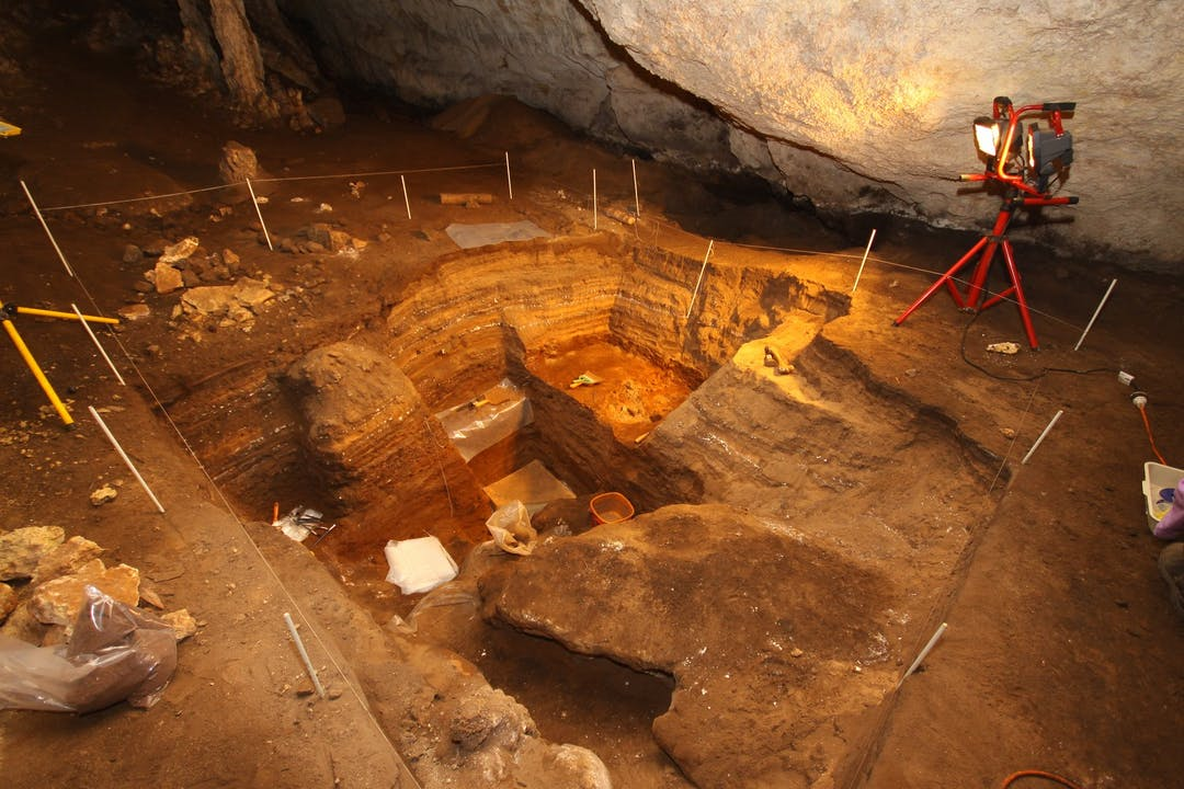 Fossil exploration at the Naracoorte Caves