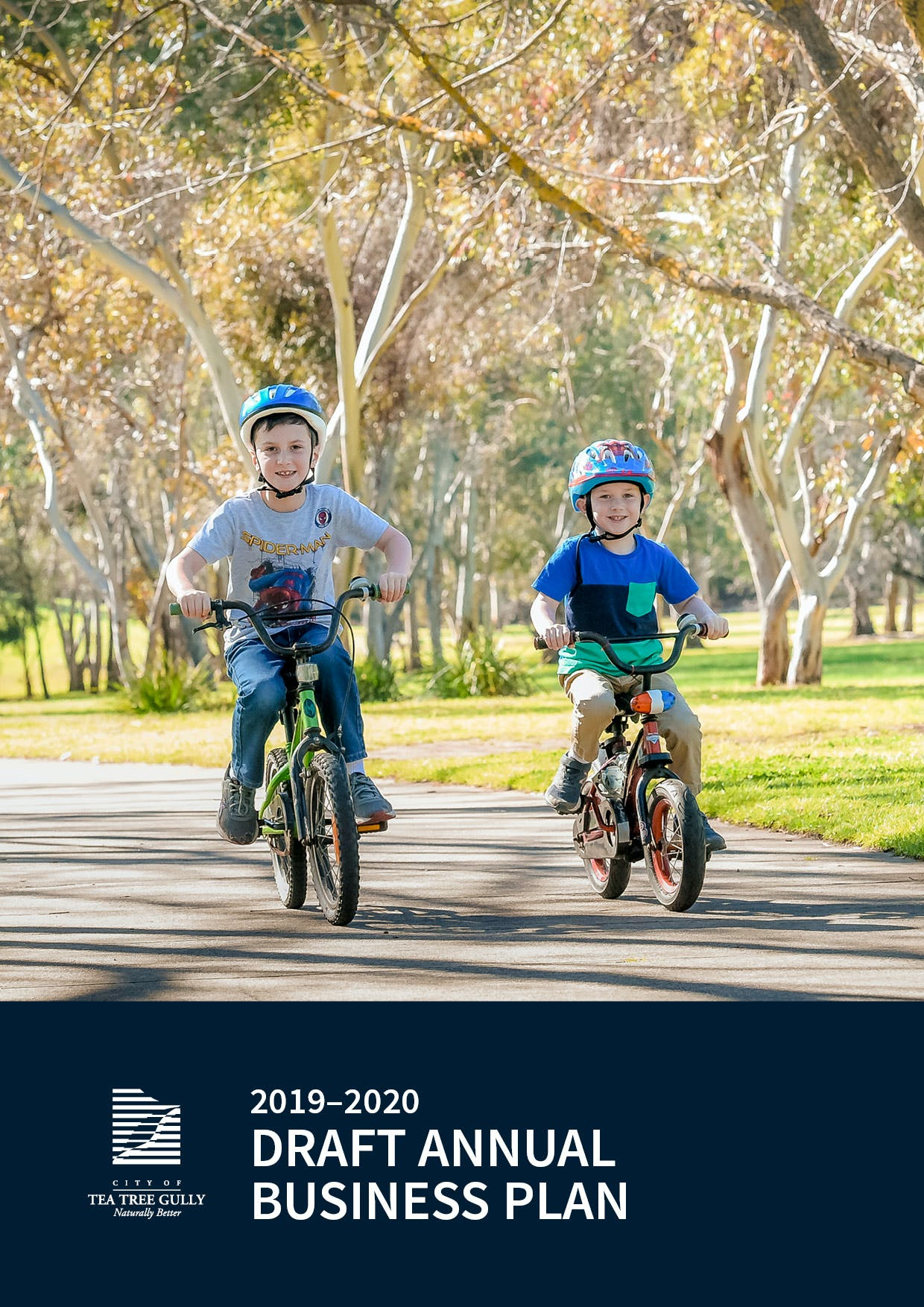 Annual Business Plan 2019-2020 - Front Cover