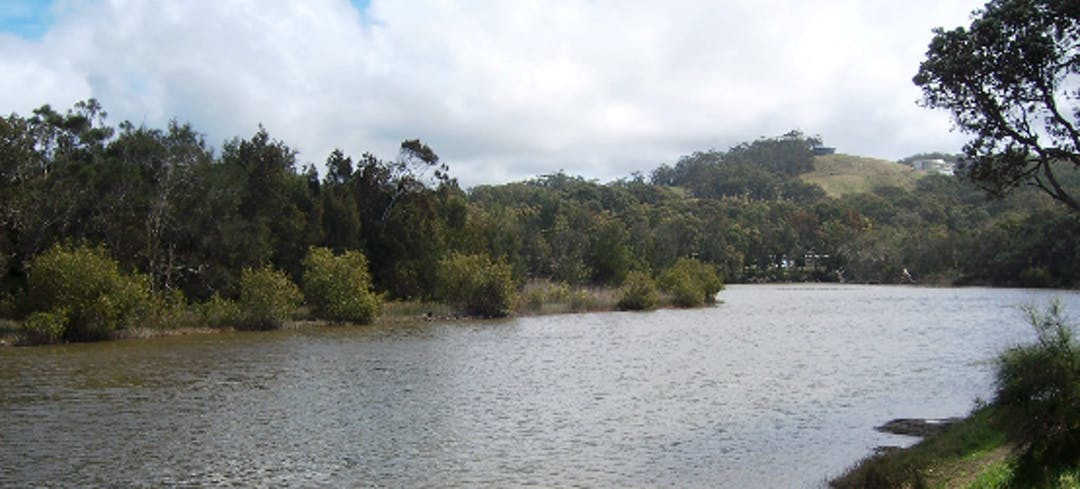 Hearnes lake image