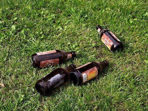 Empty beer bottles on grass