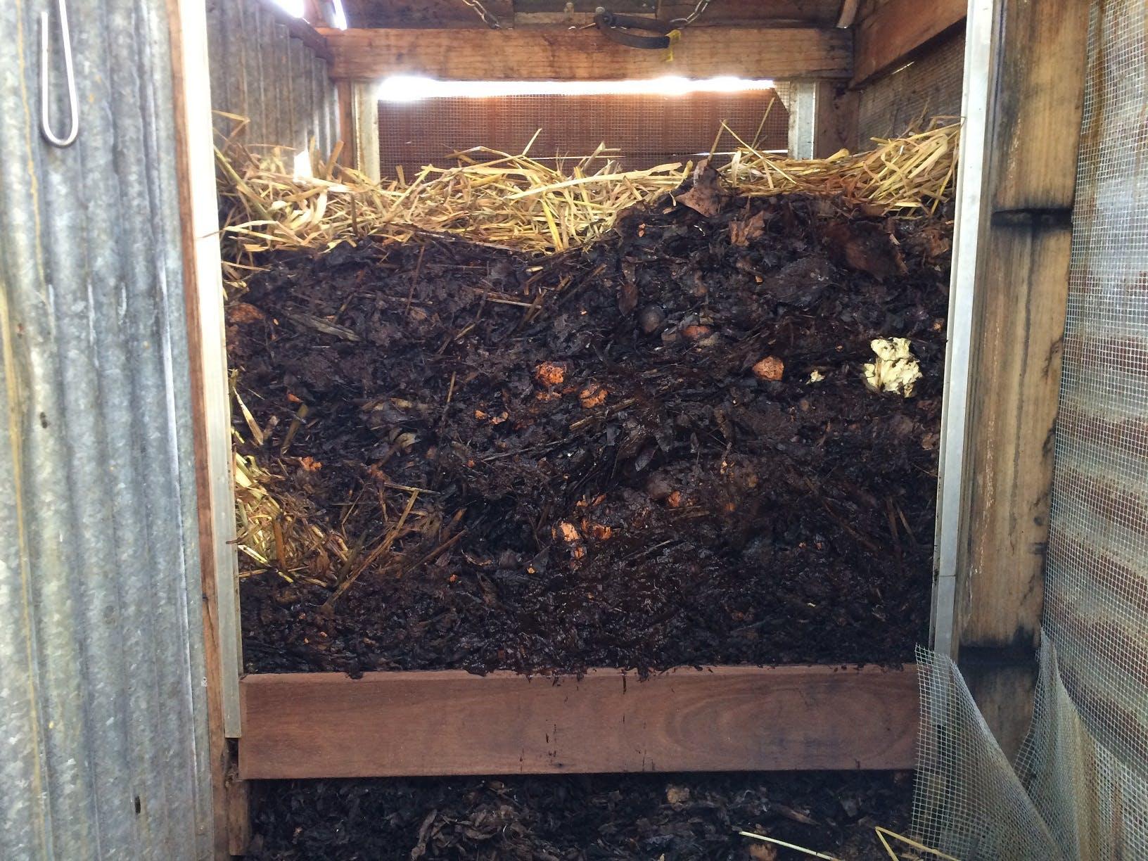 Inside Petersham Road - full compost cross section