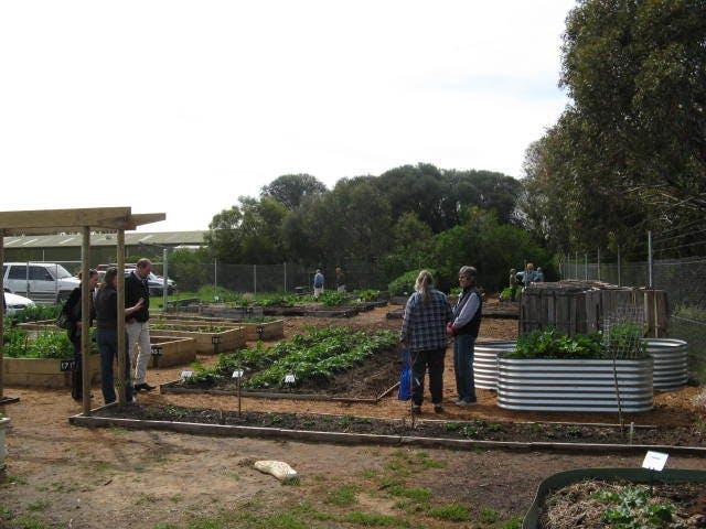 Community Garden - Goolwa