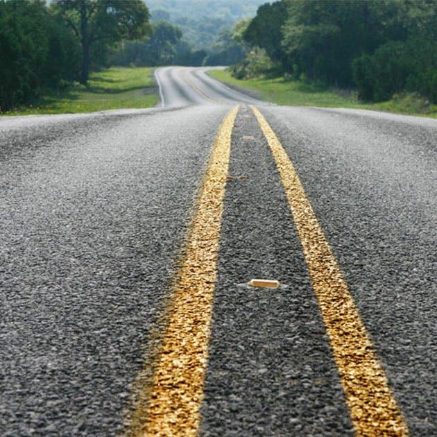 Roadsideveg
