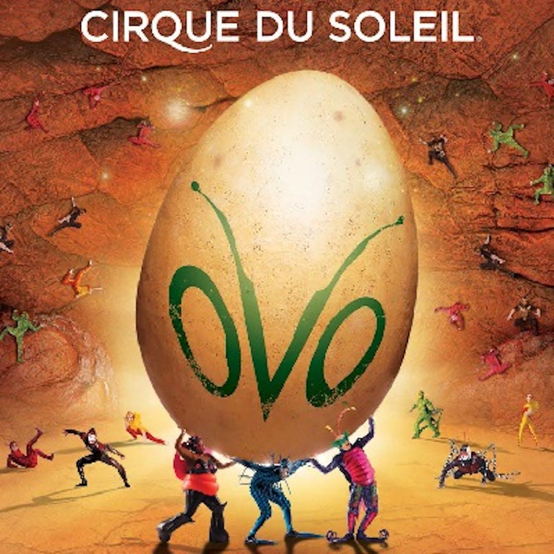 Cirque du solil ovo logo