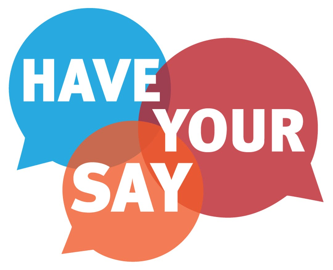 Have your say graphic web