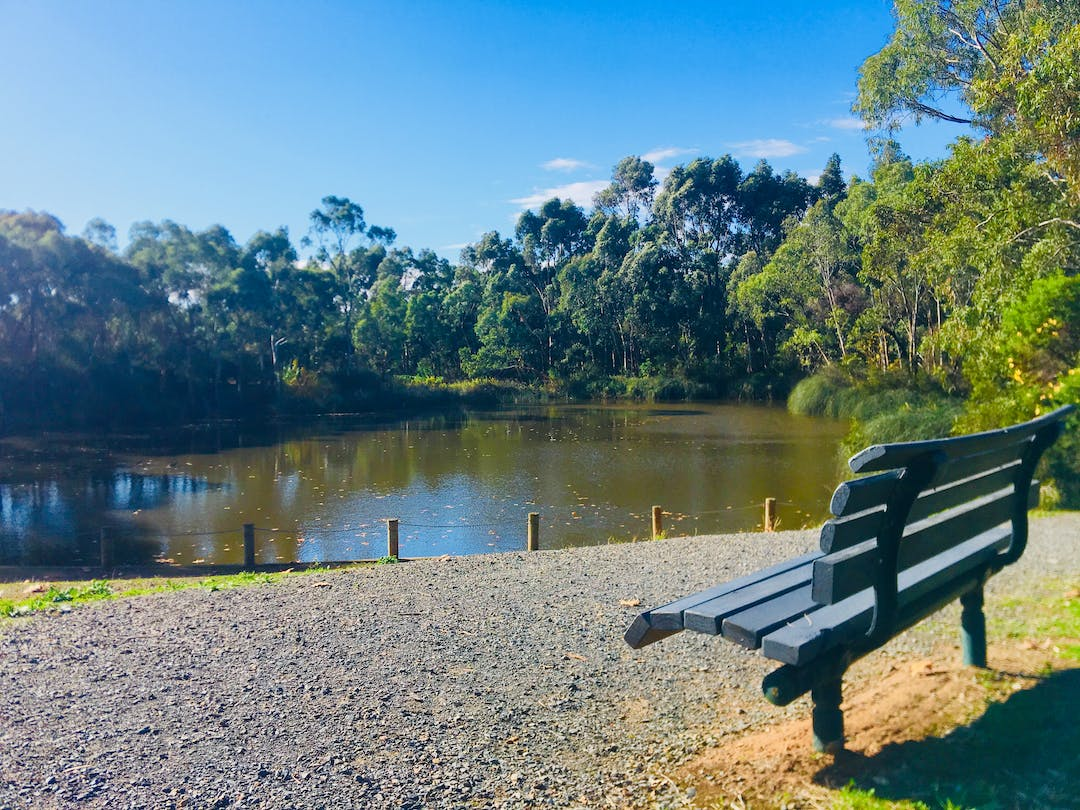 Warriparinga wetlands seat