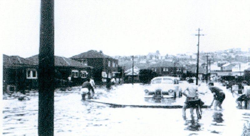 Chapman Avenue, looking west. 1959