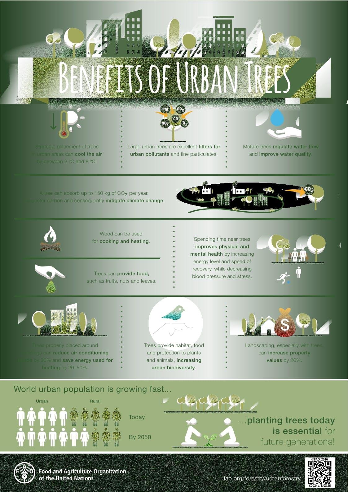 Benefit Of Urban Trees - UN