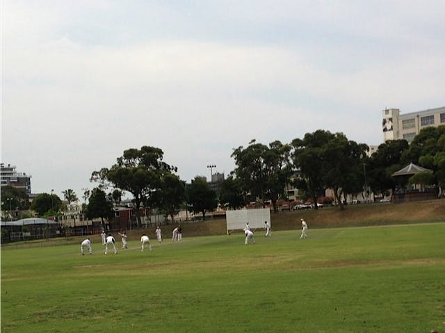 Cricket at Camperdown Oval