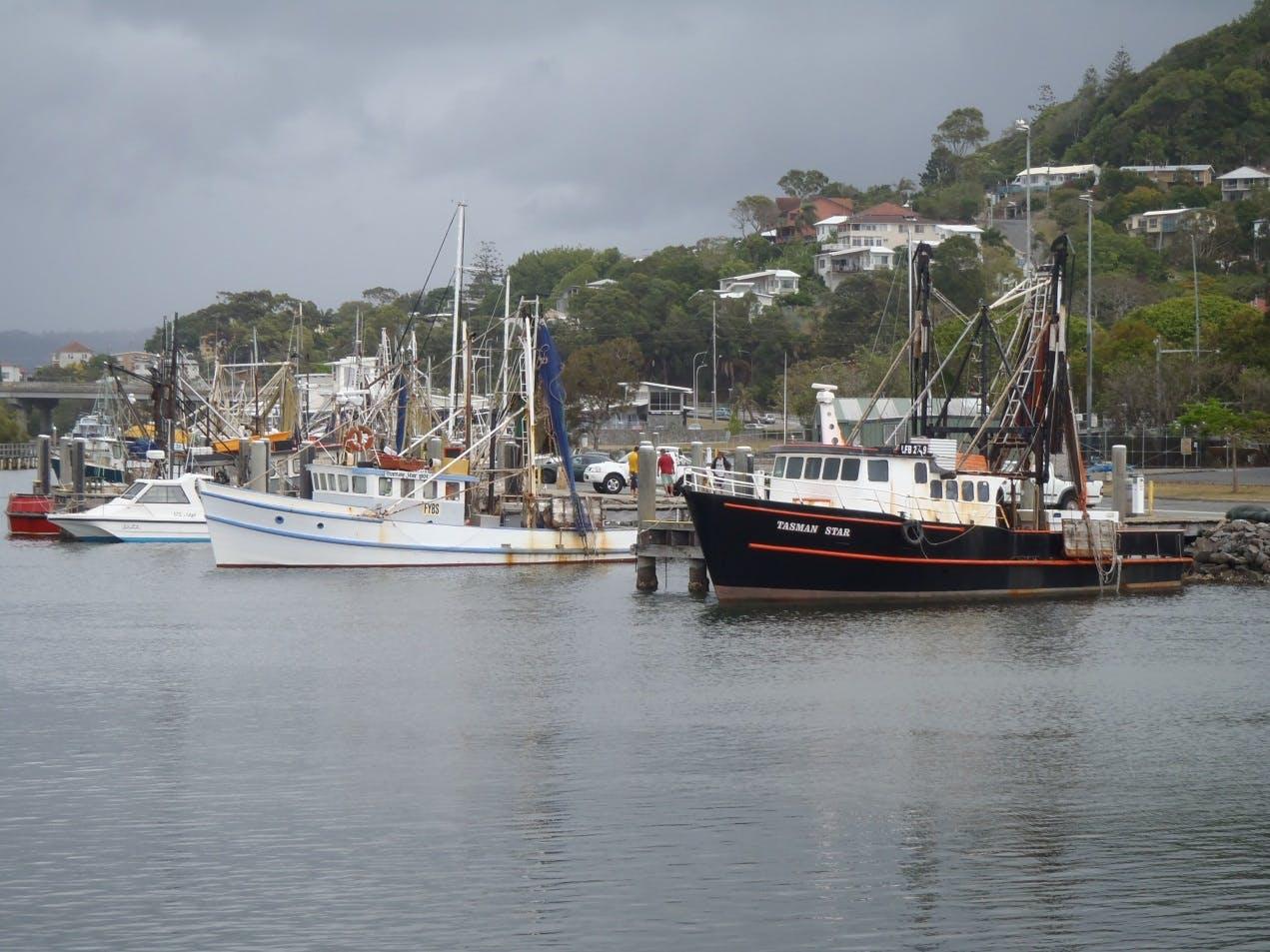 Boats at Boyd Bay
