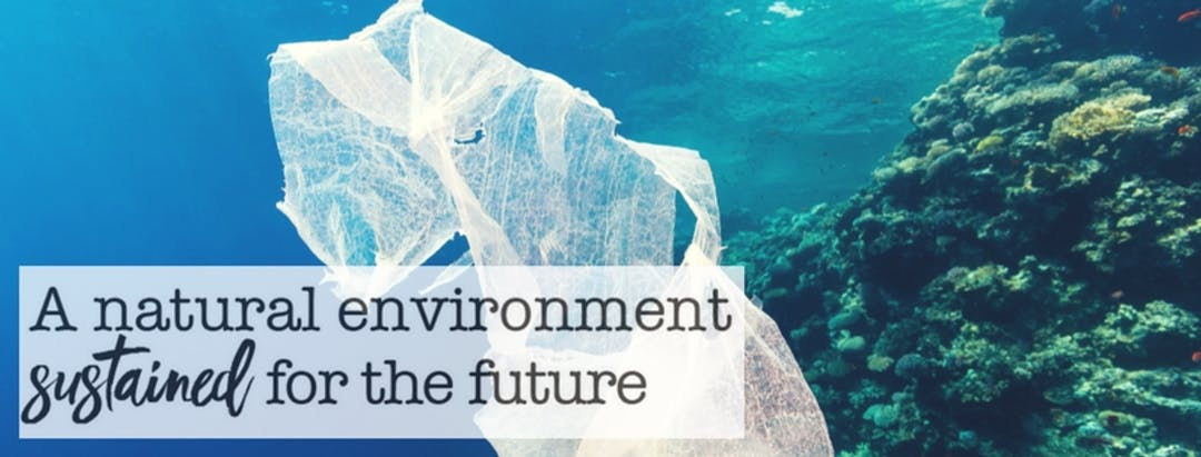 """A Natural Environment sustained for the Future"" logo image"