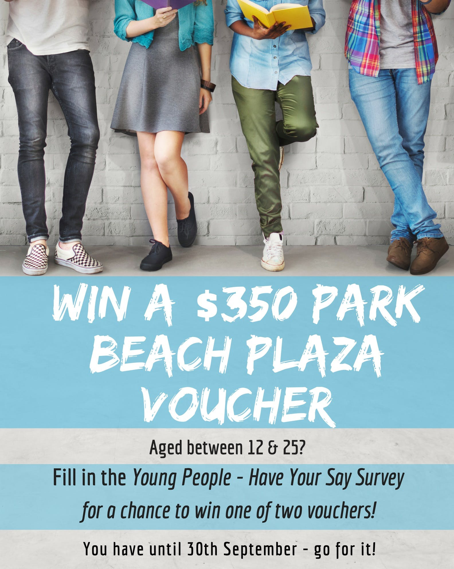 Youth Survey poster