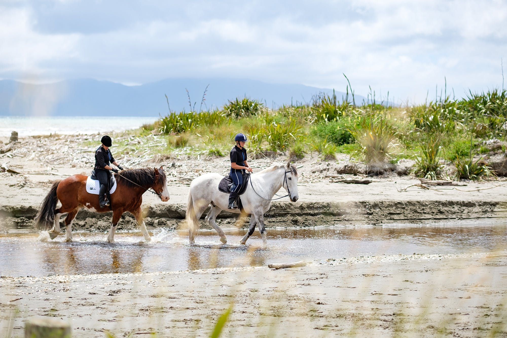 Kapiti Stables horse riding guided tours in Queen Elizabeth Park
