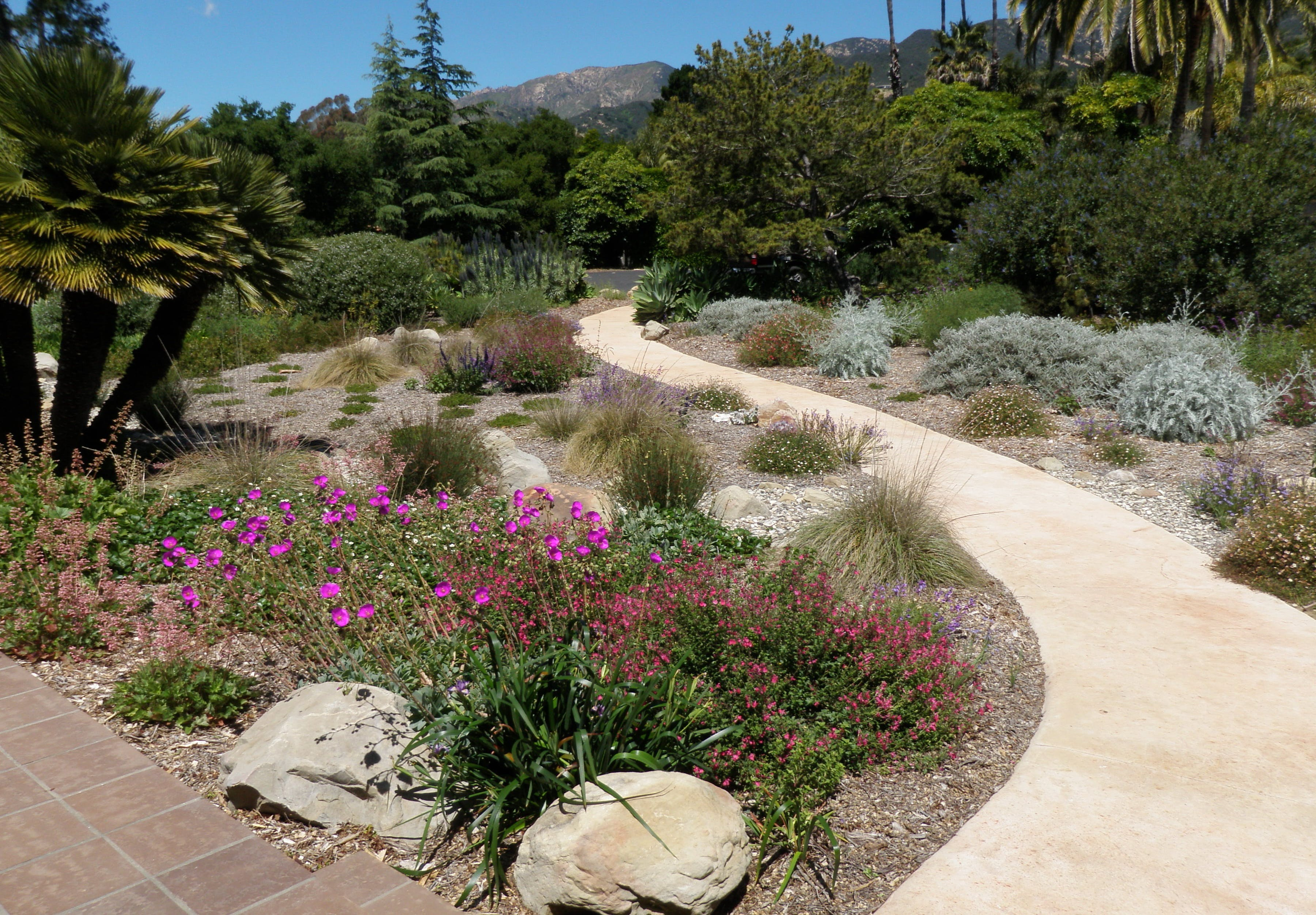 Path and gardens