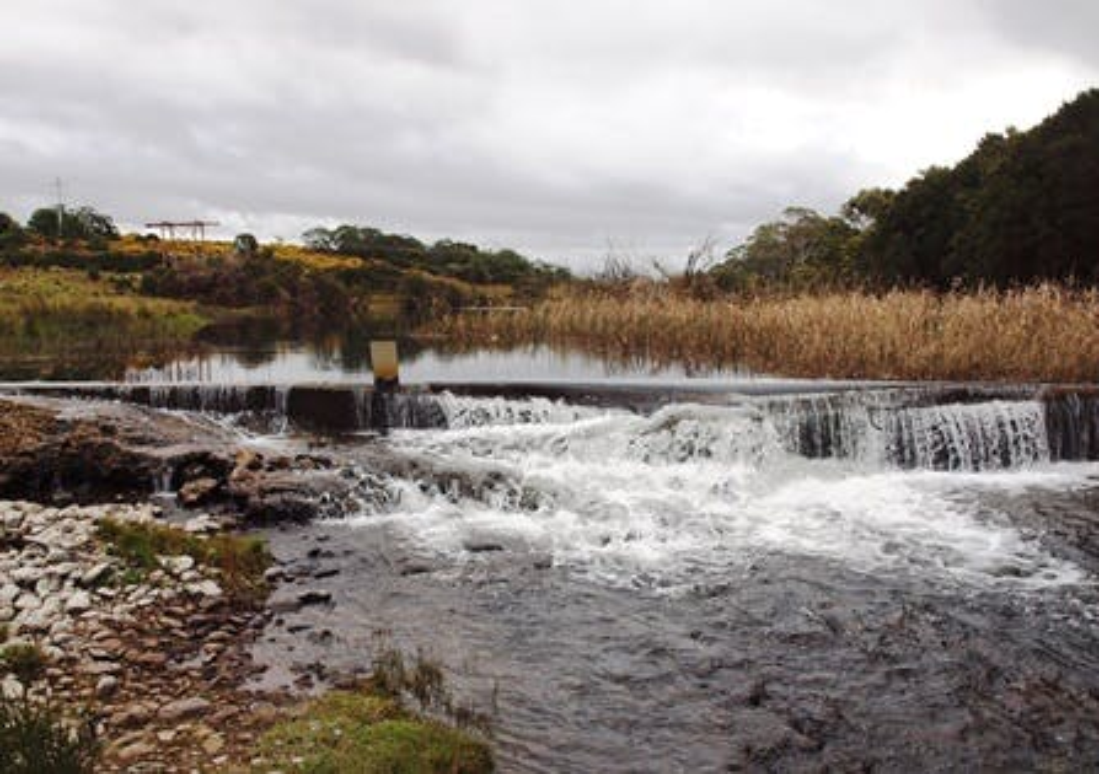 Weir on swan river