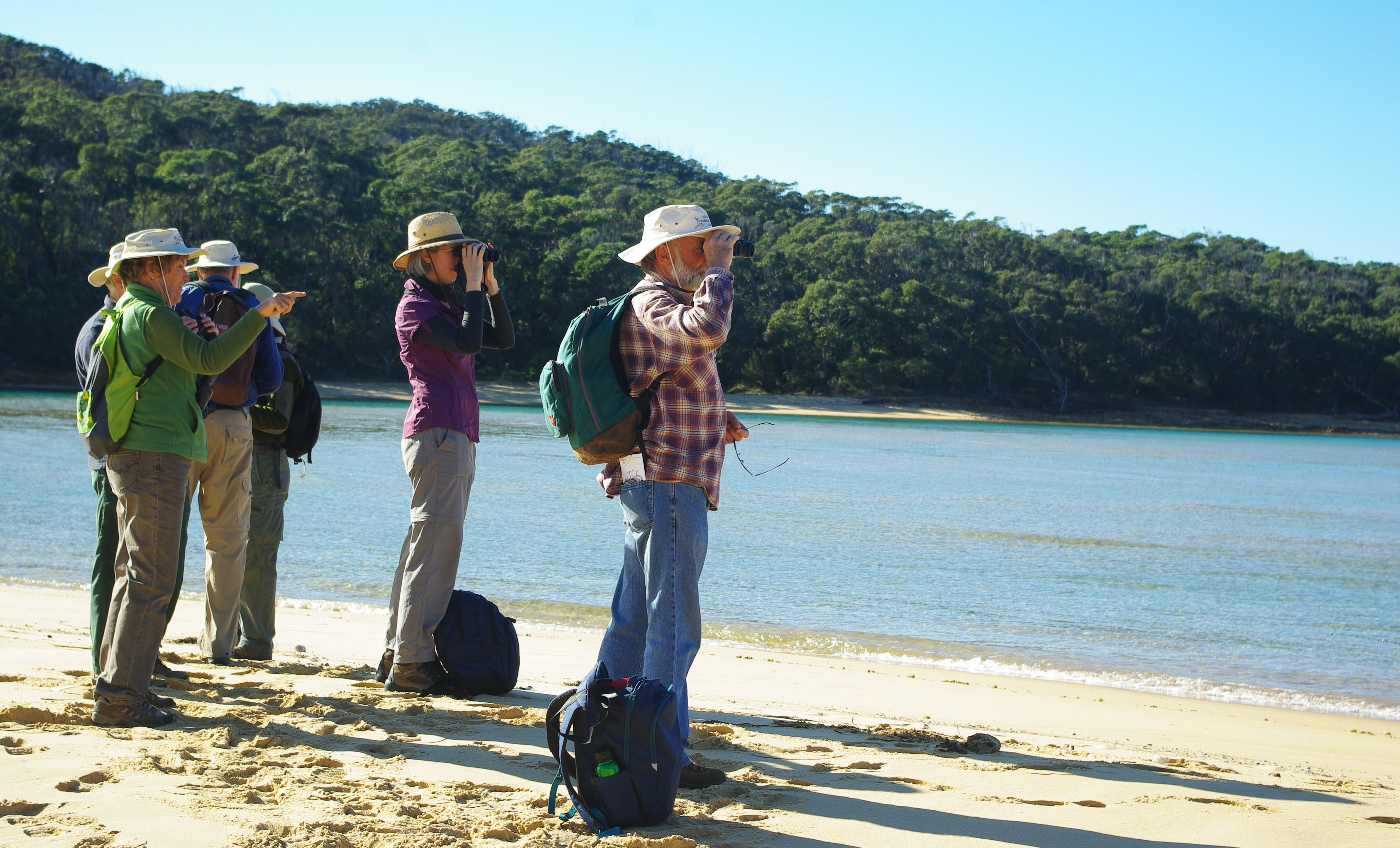 Shorebird survey group. Photo: L Brown.